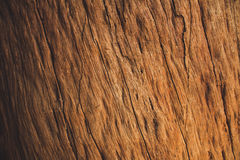 布朗硬木背景 免版税图库摄影