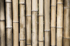 布朗竹子墙壁 库存图片
