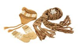 布朗羊毛围巾、一个对手套和恰好被安排的帽子 库存照片