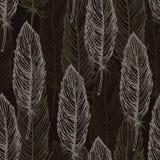 布朗羽毛样式 免版税库存图片