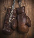布朗老拳击手套 图库摄影
