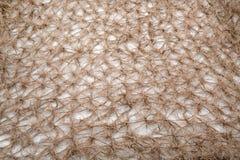 布朗背景豪华布料或难看的东西丝绸纹理缎天鹅绒波浪折叠  免版税库存照片