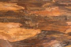 布朗自然木纹理特写镜头背景 库存图片
