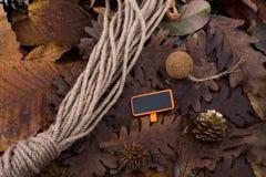 布朗荚、胶囊和一条绳索在一片干燥叶子作为秋天backg 库存图片