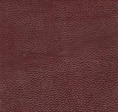 布朗葡萄酒皮革 免版税库存图片