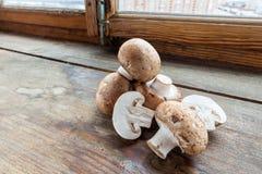 布朗蘑菇蘑菇 库存图片