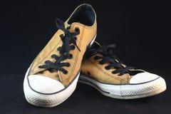 布朗运动鞋 免版税库存图片