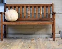 布朗长凳用一个白色南瓜 库存照片