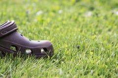 布朗鞋子 免版税图库摄影