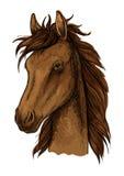 布朗骄傲的马艺术性的画象 免版税库存图片