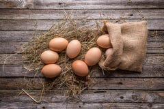 布朗鸡蛋 免版税库存图片