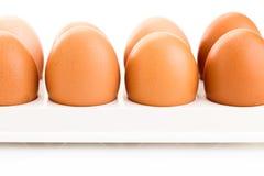 布朗鸡鸡蛋 图库摄影