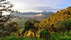 布罗莫火山,一座活火山在东爪哇省 图库摄影