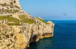 直布罗陀的海边欧罗巴点的 图库摄影