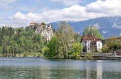 布莱德湖在斯洛文尼亚,春天2015年 免版税图库摄影