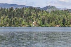布莱德湖在斯洛文尼亚,春天2015年 库存图片