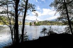 布莱德湖在斯洛文尼亚,春天2015年 图库摄影