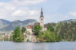 布莱德湖在斯洛文尼亚,春天2015年 免版税库存照片