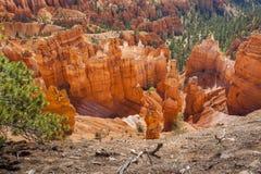 布莱斯峡谷国家公园在犹他,美国 图库摄影