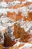 布莱斯峡谷国家公园垂直在冬天 免版税库存图片