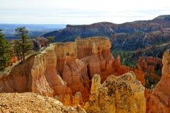 布莱斯峡谷国家公园,犹他金黄峭壁  免版税库存照片
