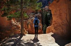 布赖斯国家公园光芒四射的岩石&不祥之物 图库摄影