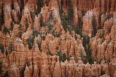布赖斯峡谷犹他西部美国 图库摄影