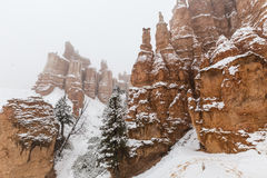 布赖斯峡谷雪风暴不祥之物在南犹他 免版税库存照片