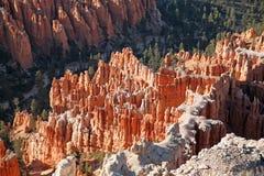 布赖斯峡谷,犹他,美国 免版税库存图片