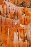 布赖斯石峰 库存照片