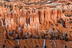 布赖斯风景峡谷的冬天 免版税库存照片