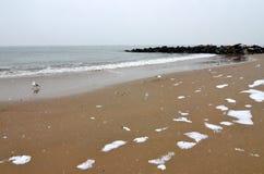 从布赖顿海滩在冬天,纽约的海洋 免版税库存图片