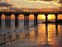 布赖顿海滩日落 库存照片