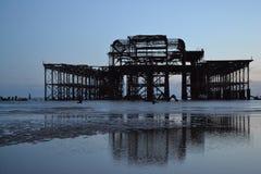 布赖顿码头海鸥 库存图片