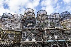 布赖顿虾笼 库存图片
