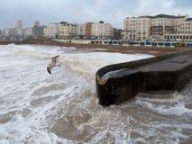 布赖顿, SUSSEX/UK - 2月15日:在风暴以后的布赖顿 图库摄影