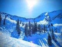 从布赖顿滑雪胜地的冬天风景在wasatch山犹他 免版税库存照片
