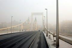 布达佩斯伊丽莎白桥梁 免版税库存图片