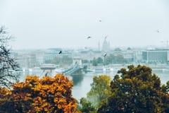 布达佩斯全景在秋天 免版税库存照片