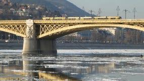 布达佩斯冬天定期的冰冷的多瑙河玛格丽特桥梁 免版税库存图片