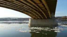 布达佩斯冬天定期的冰冷的多瑙河,玛格丽特桥梁icd块漂浮 免版税库存图片