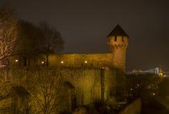 布达佩斯城堡的塔  免版税库存图片