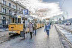 布达佩斯,匈牙利- 1月6 2014年:在街道o上的黄色电车 免版税库存照片