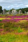 布里坦尼巨石纪念碑 免版税库存图片