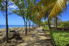 布里季敦,巴巴多斯,加勒比 免版税库存图片