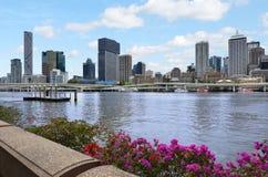 布里斯班地平线-昆士兰澳大利亚 免版税库存图片