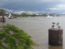 布里斯班河视图 库存照片