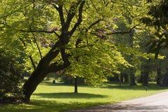 布里曼公园 免版税库存照片