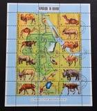布隆迪共和国的一系列的邮票 库存图片