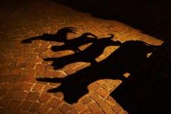 布雷莫镇音乐家阴影 免版税库存图片